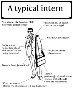 The-typical-intern