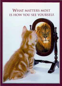 cat-looking-in-mirror-lionabout-the-smart-yug---smart-yug-fk8mglan