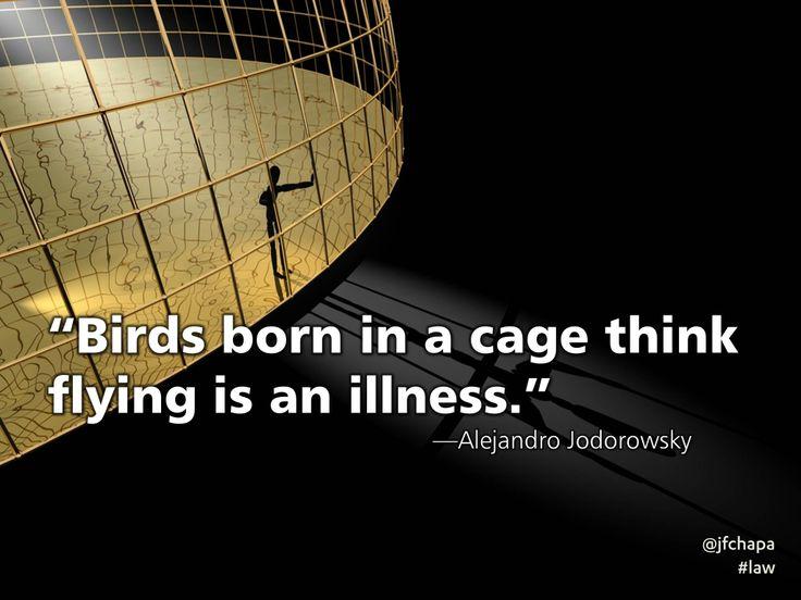 """""""Birds born in a cage…"""" – Alejandro Jodorowsky"""